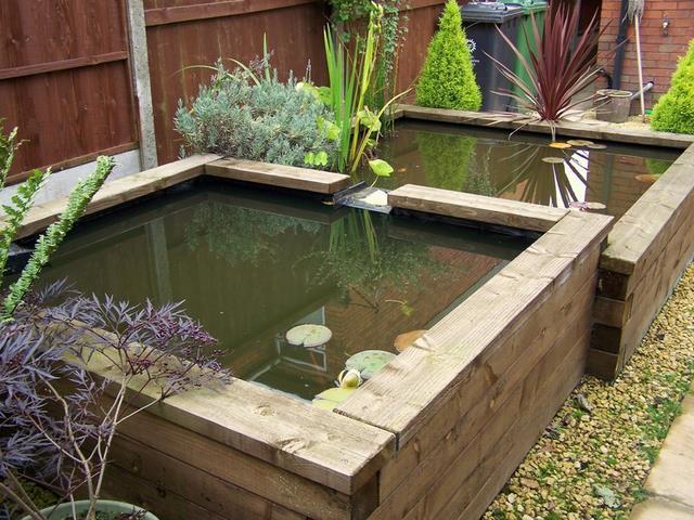 Koi ponds for Koi pond design uk
